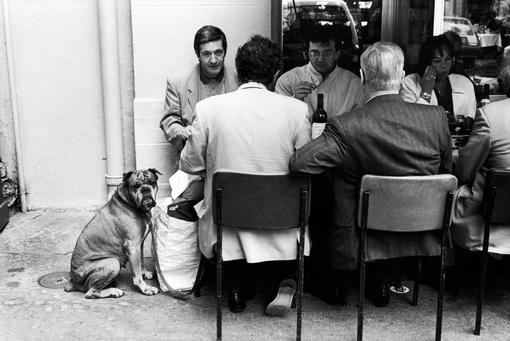 Black and white photo of a scene in front of a Paris bistro, 5 men and a woman sitting at a table, talking and eating, next to them sits a bulldog looking at the camera